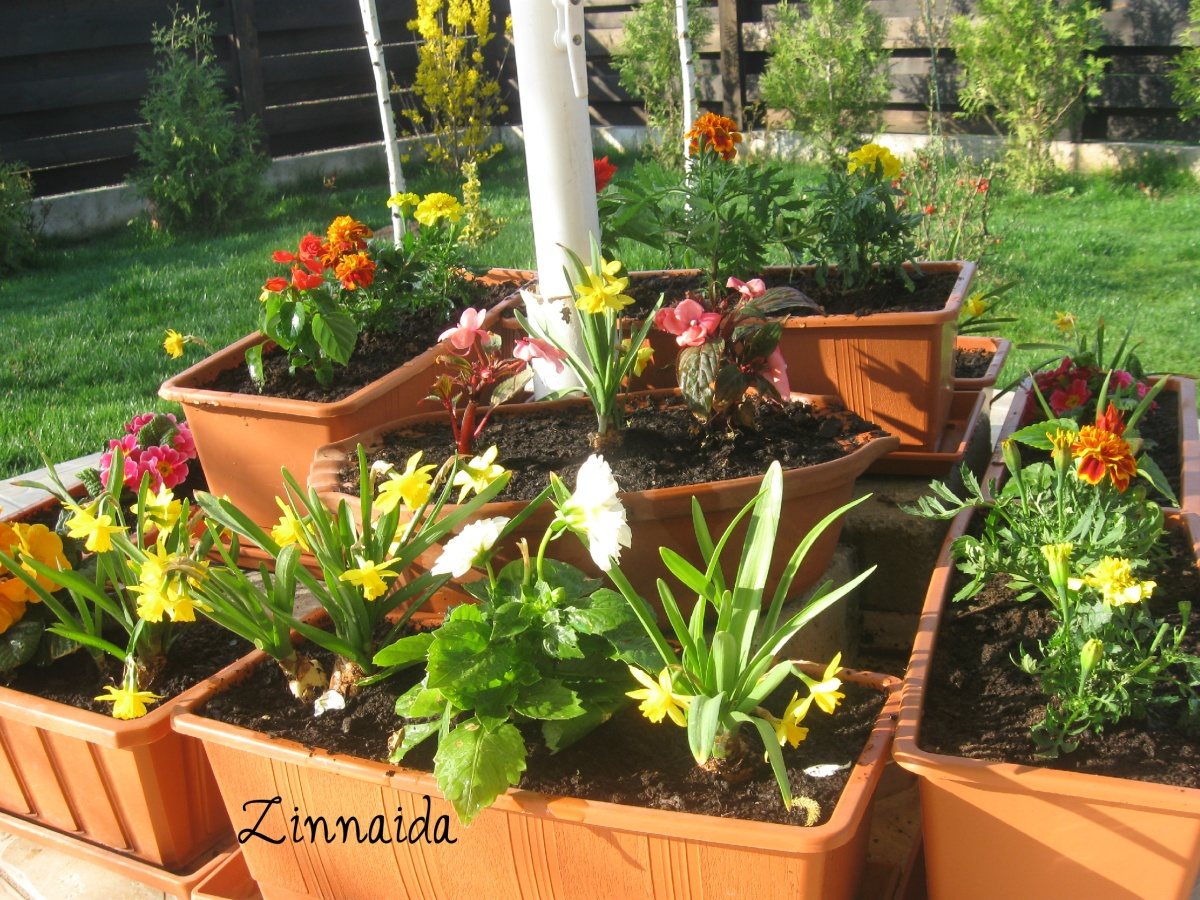 jardiniere-31.03.2014