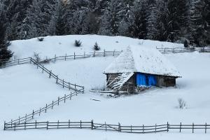 casa cu perete albastru